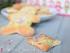 befanini della versilia, befanotti, biscotti, versilia, lucca